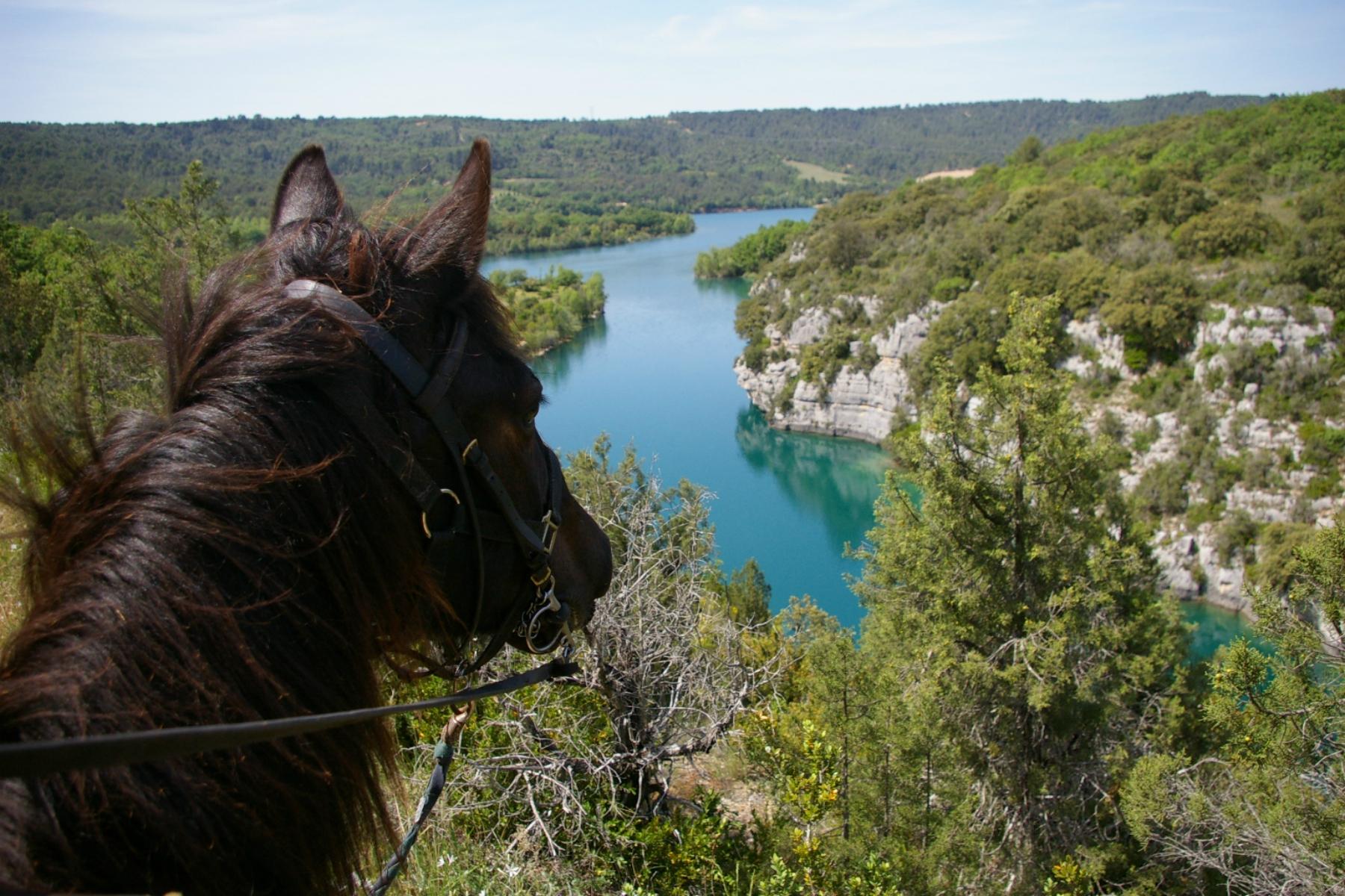 Photo A cheval avec Les Chevaux du Verdon
