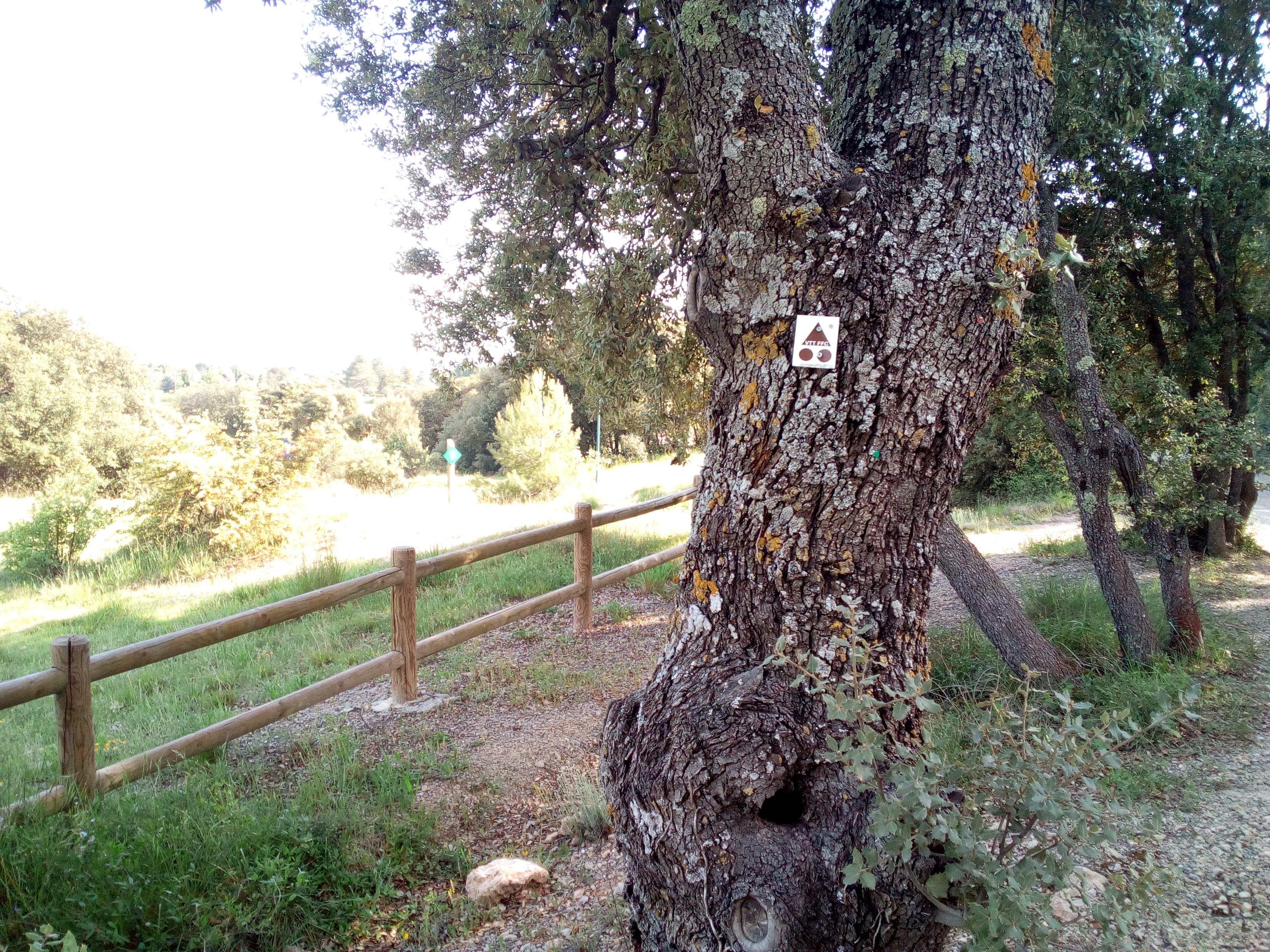 Photo Parcours VTT N°2 - 6.5 km