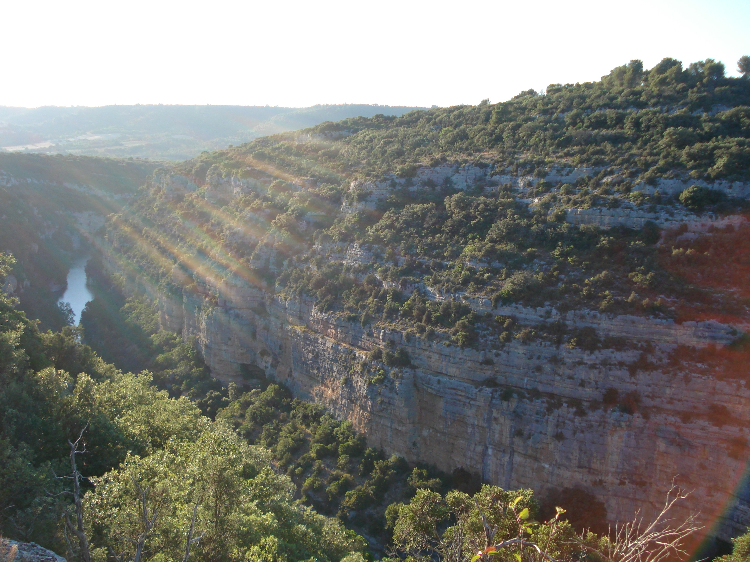Photo Randonnée pédestre encadrée sur le chemin des basses gorges et du sentier botanique de Baudinard