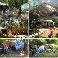 Camping l'Avelanède